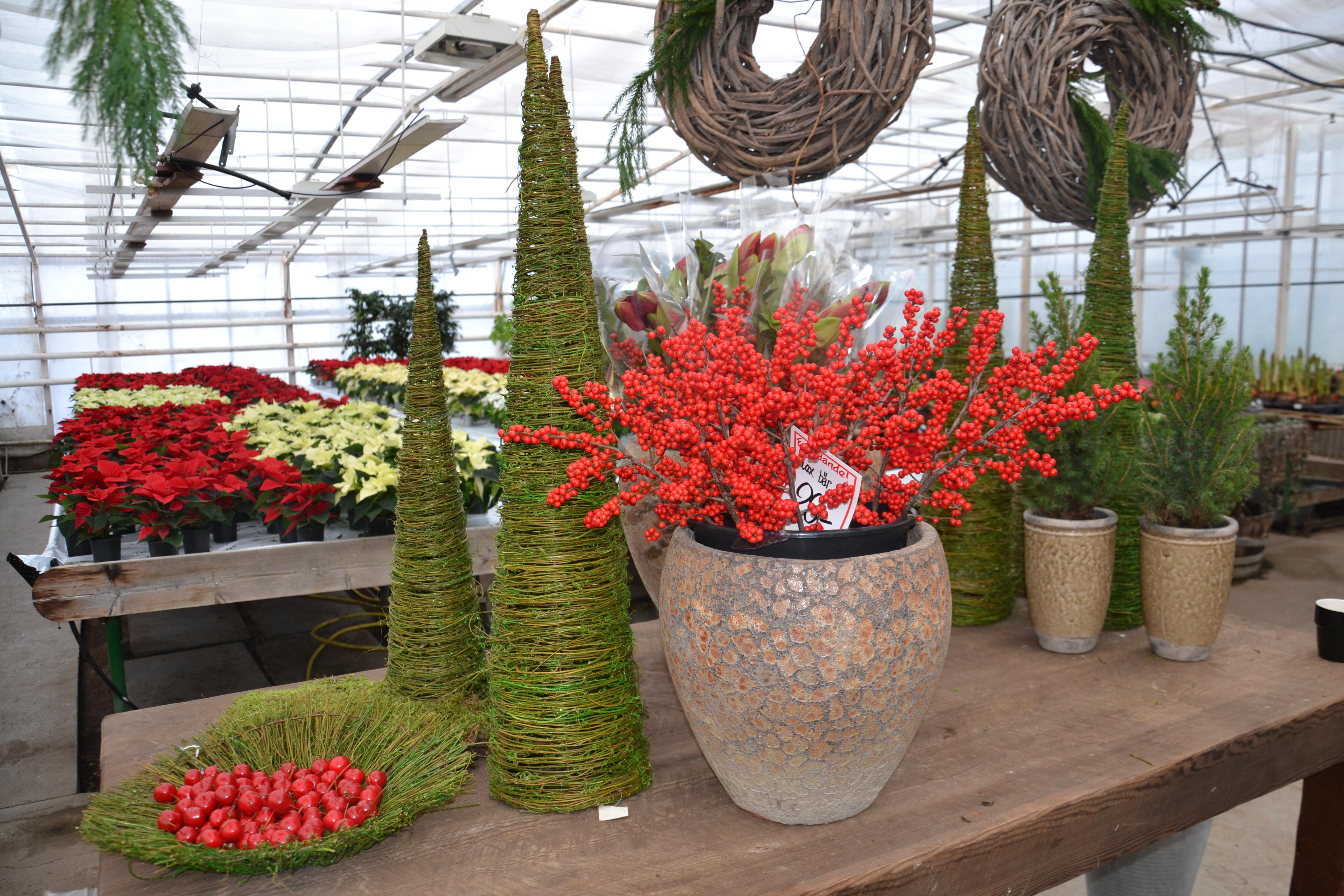 Jul i växthuset